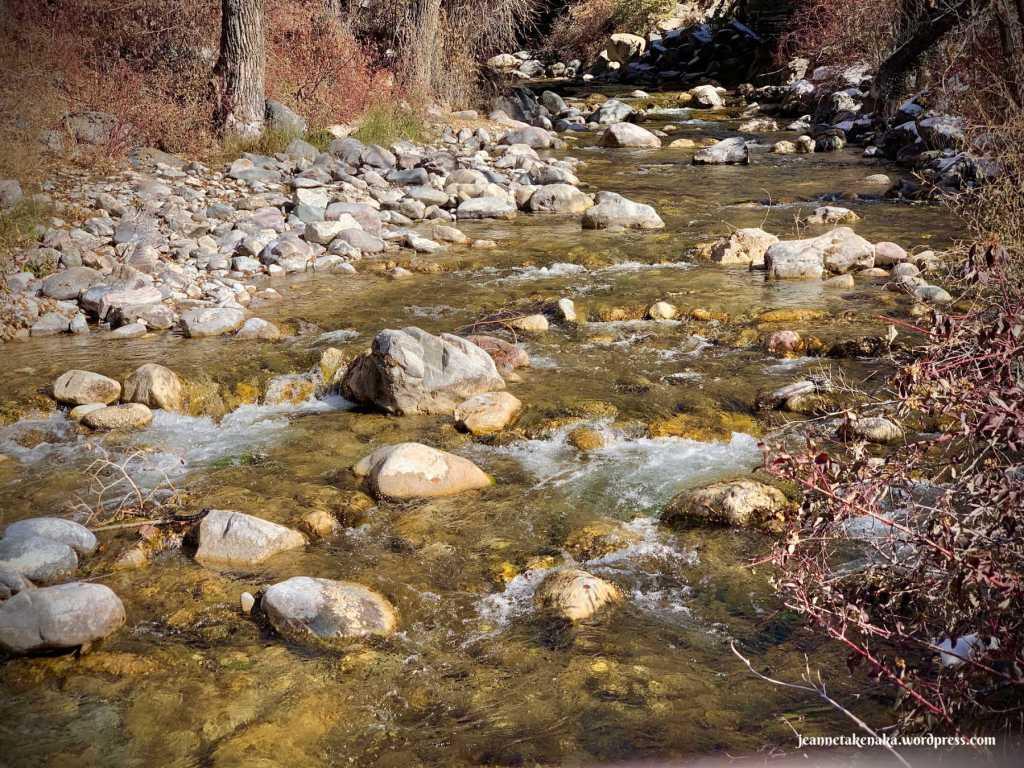 A rock-strewn stream