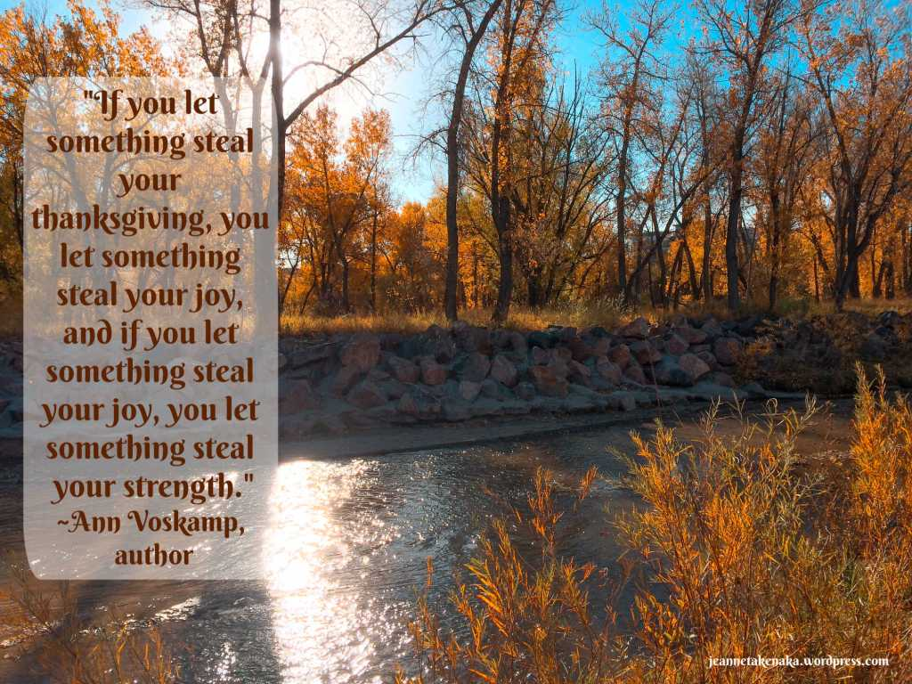 "Meme with the quote: ""If you let something steal your thanksgiving, you let something steal your joy, and if you let something steal your joy, you let something steal your strength."" ~Ann Voskamp, Author on a backdrop of fall-leafed trees near a creek."