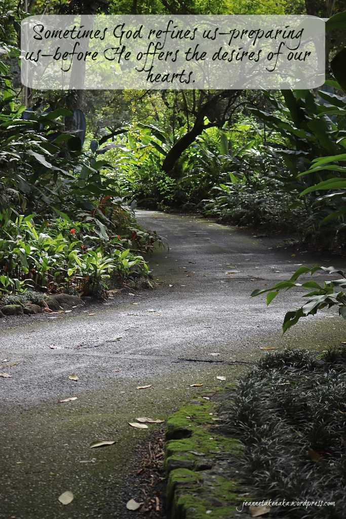 "Meme that says, ""Sometimes God refines us—preparing us—before He offers the desires of our hearts."" on a backdrop of a dim path with lush foliage on each side"