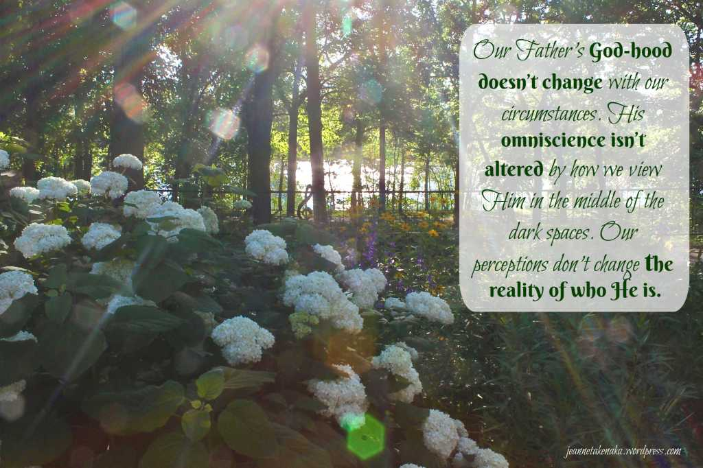 "Meme with the words: ""Our Father's God-hood doesn't change with our circumstances. His omniscience isn't altered by how we view Him in the middle of the dark spaces. Our perceptions don't change the reality of who He is."" on backdrop of sun rays and bokeh and a snowball bush"