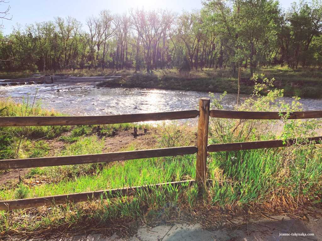 Picture of a fence holding you back from a river flowing and trees on the opposite bank, reminder that we still live with boundaries on our lives