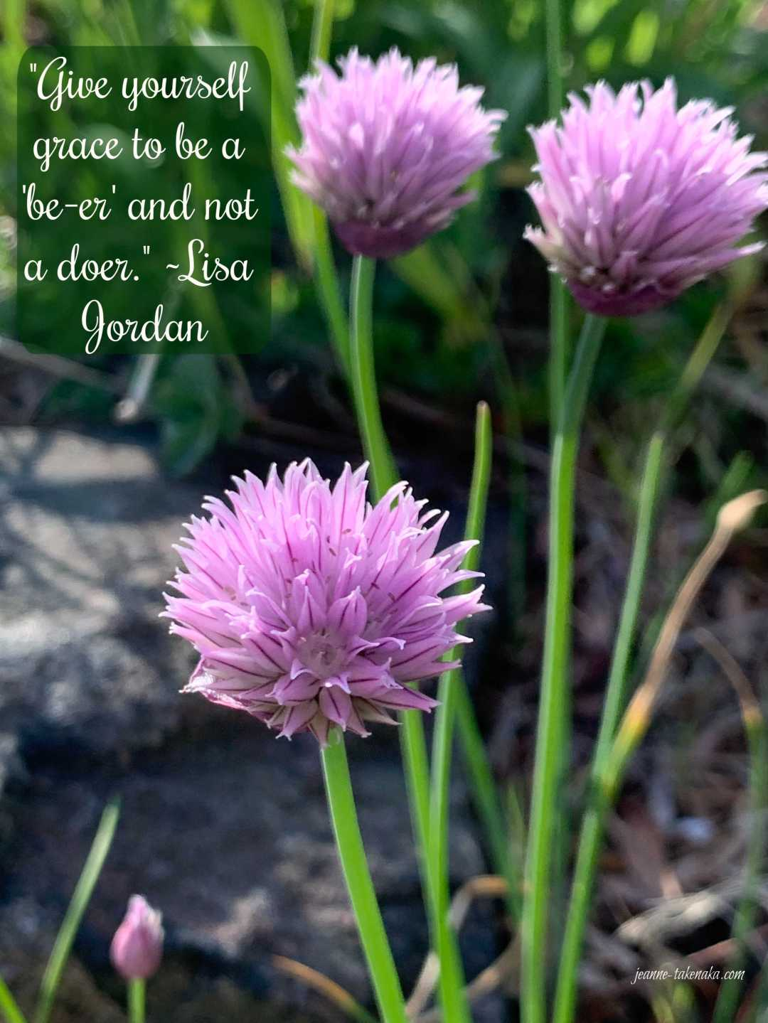 "A meme with the words: ""Give yourself grace to be a 'be-er' and not a doer. ~Lisa Jordan"" on a back drop with purple flowers and green grasses"