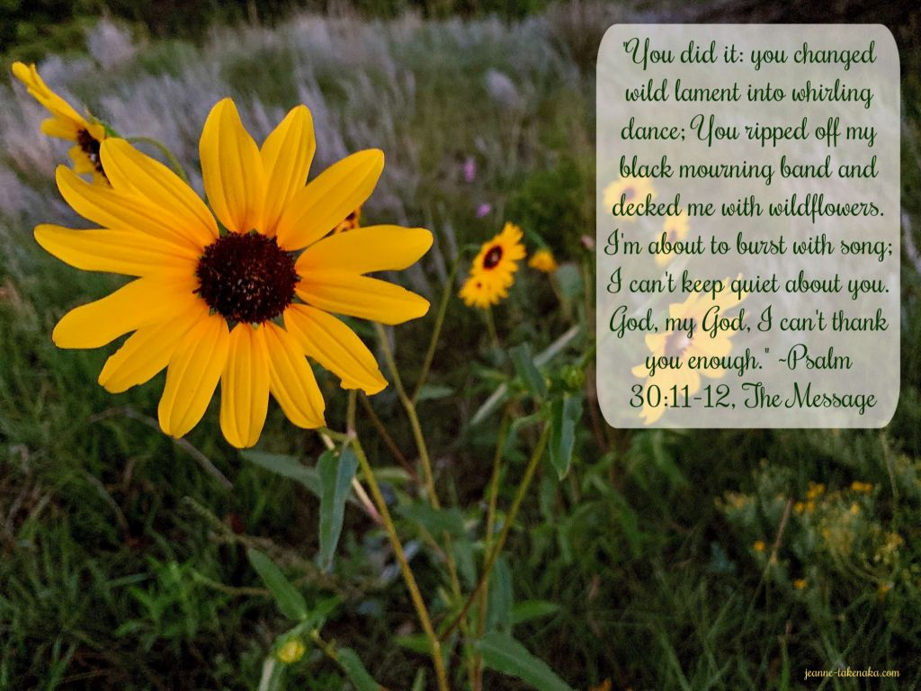 "Meme which says, ""You did it: you changed wild lament into whirling dance; you ripped off my black mourning band and decked me with wildflowers. I'm about to burst with song; I can't keep quiet about you. God, my God I can't thank you enough."" ~Psalm 30:11, 12 The Message on a backdrop of a Black-eyed Susan in the early morning"