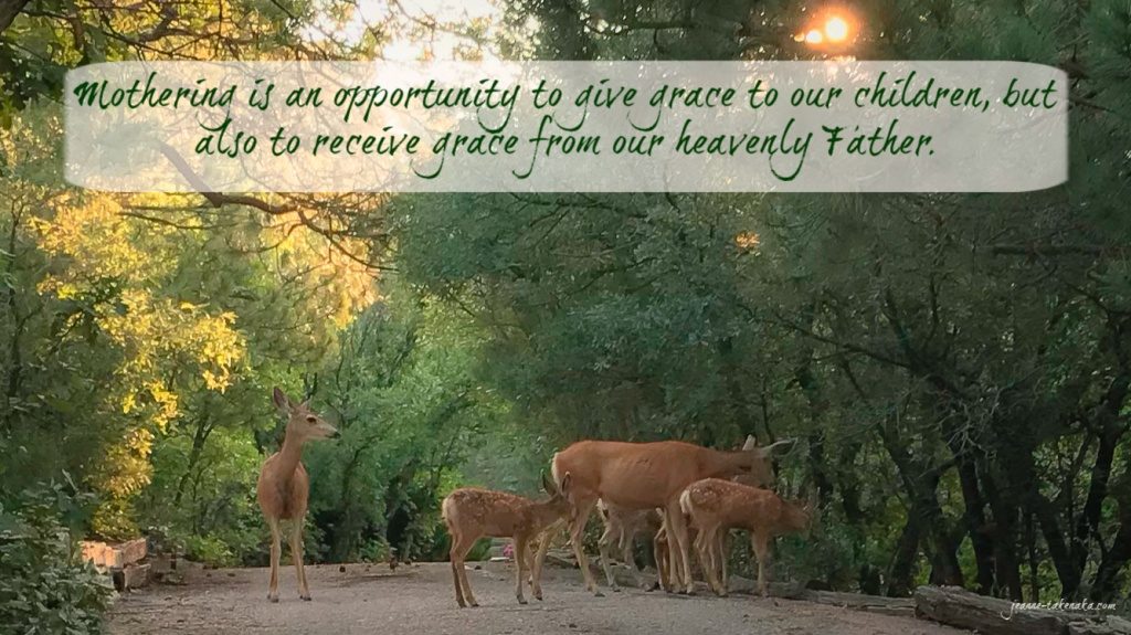 "Meme on a photo of mother deer and their fawns with the words: ""Mothering is an opportunity to give grace to our children, but also to receive grace from our Heavenly Father."""